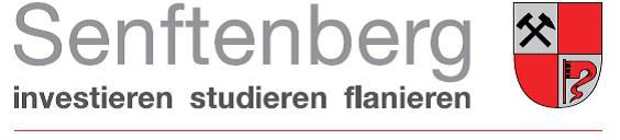 Logo der Stadt Senftenberg